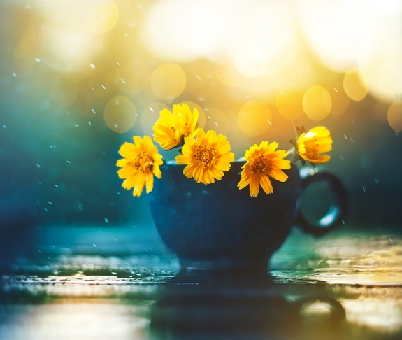 cup-of-warmth-by-ashraful-arefin
